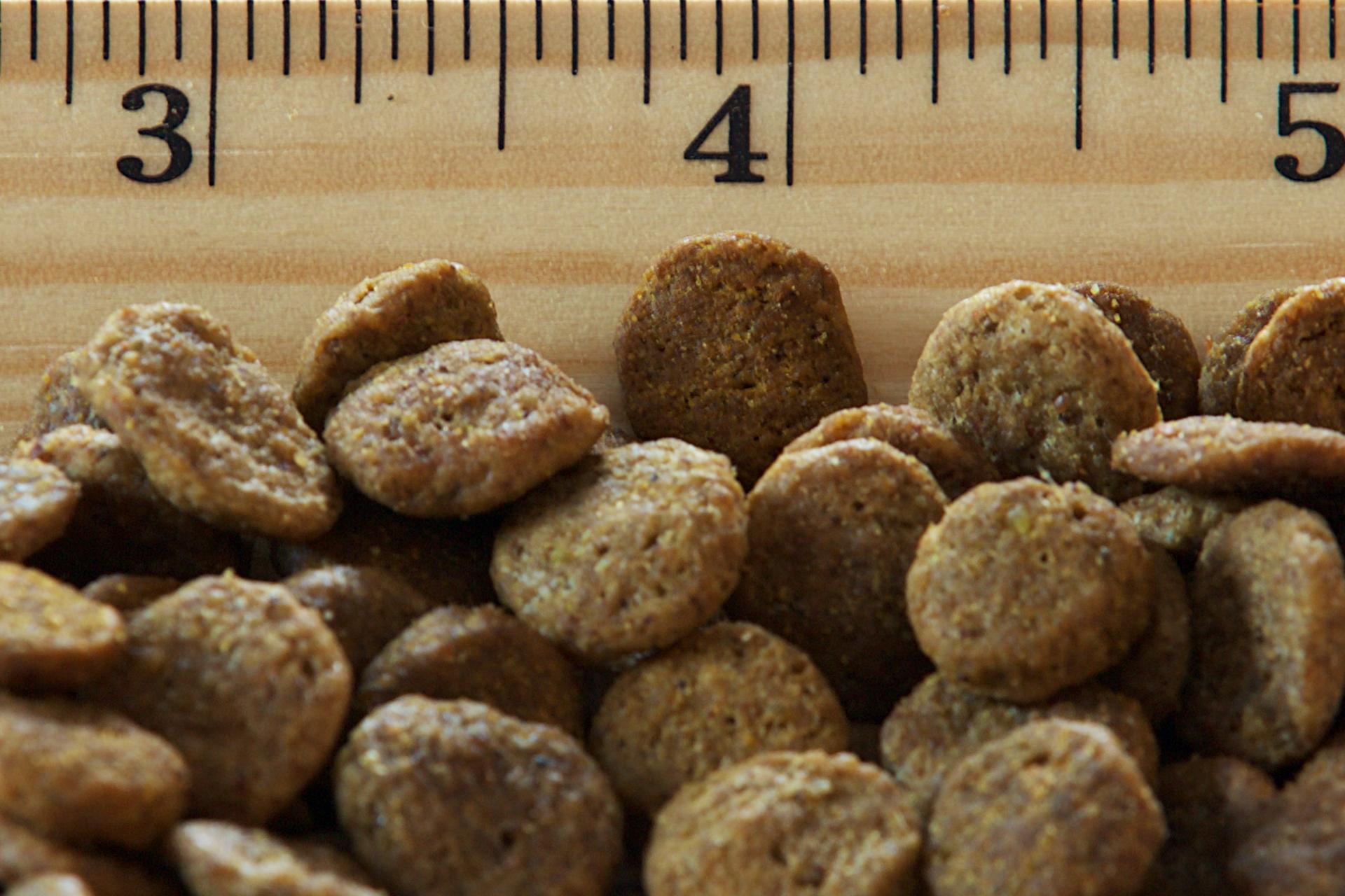 Weight Management Pork Amp Lentils Dry Dog Recipe